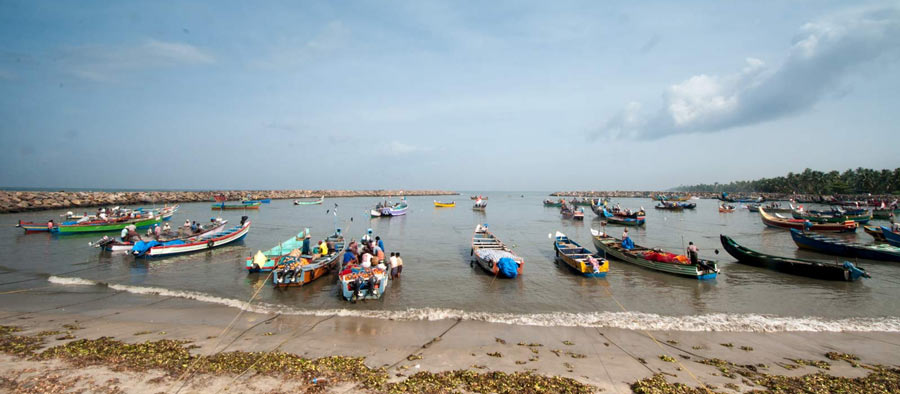 Guide to Kochi can include a visit to the fishing village where fish are auctioned
