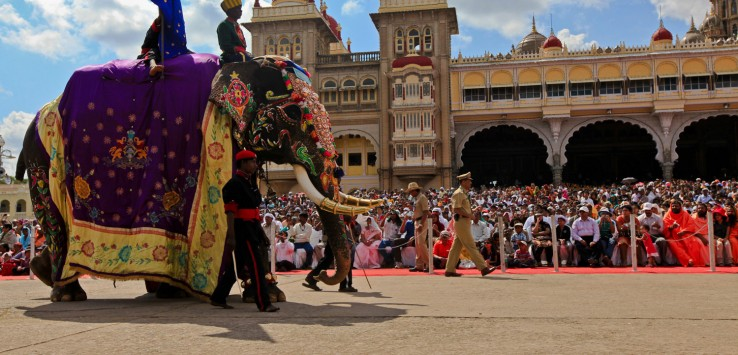 Mysore Dasara and elephants go hand-in-hand.