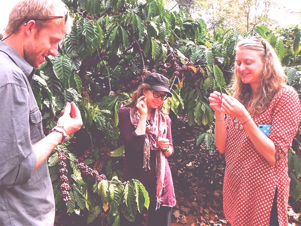 Any Coorg tour should include a visit to a coffee plantation